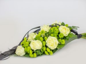Kasileinakimp-rohelise-valgega