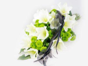 Kasileinakimp-valge-rohelisega